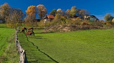 Šetnjom po bajkovitoj Bilogori – neodoljiva destinacija ruralnog turizma